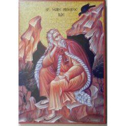 Icoana cu Sf. Proroc Ilie- 20 x 30 cm