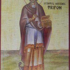 Icoana cu Sf. Trifon, doctor fara de arginti – 20 x 30 cm